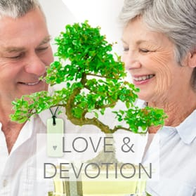 Bonsai meaning Love & devotion