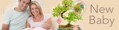 New Baby Bonsai Gifts