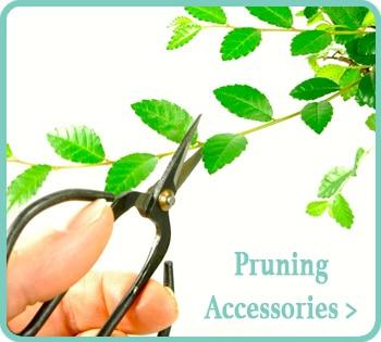 Bonsai Pruning Tools