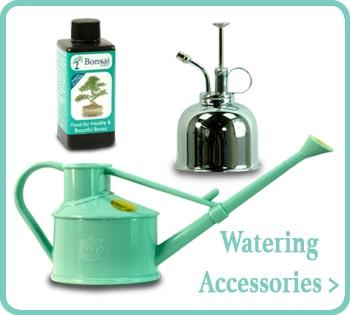 Buy bonsai watering accessories