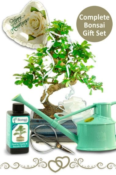 Complete Anniversary Gift Set - with Watering Can