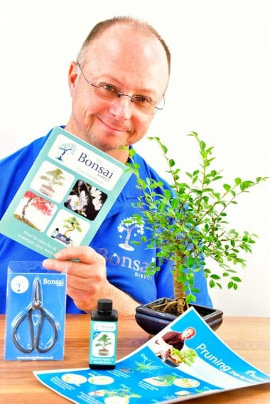 Beginners Baby Bonsai Kit - Pruning