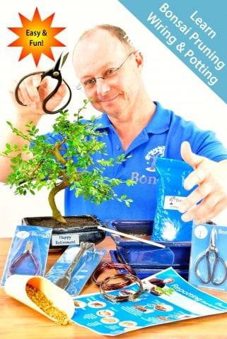 Comprehensive Bonsai Retirement Gift - Hands On Experience.
