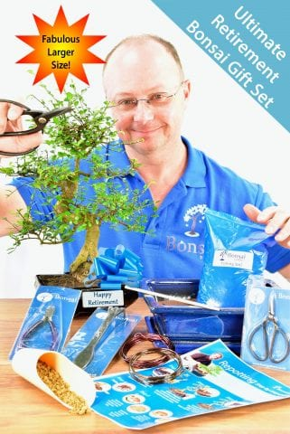 Large Comprehensive Retirement Bonsai Gift - Perfect new Hobby!