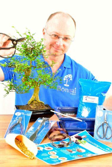 Large Twisty Beginners Bonsai Kit - Pruning, Wiring & Potting