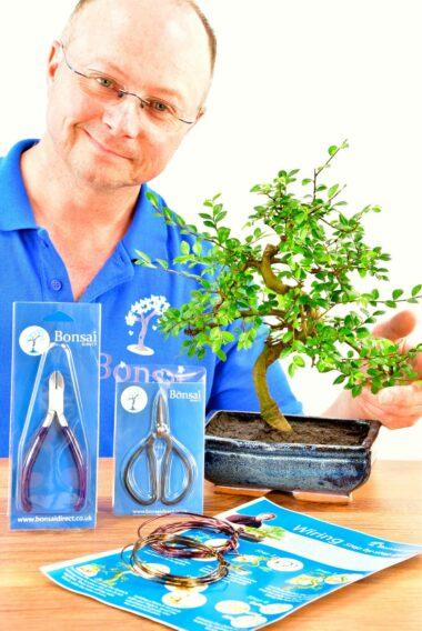 Medium Twisty Bonsai Kit - Pruning & Wiring