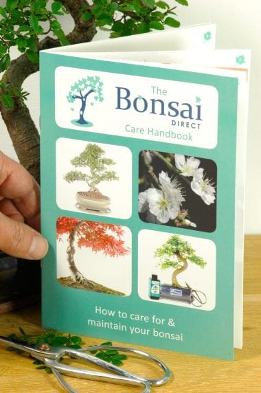 The Bonsai Direct Care Handbook
