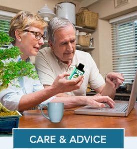 Bonsai Tree Care & Advice