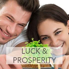Luck & Prosperity