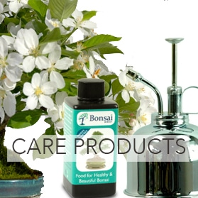 Bonsai Care Products