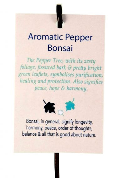 Aromatic Pepper bonsai meaning tag