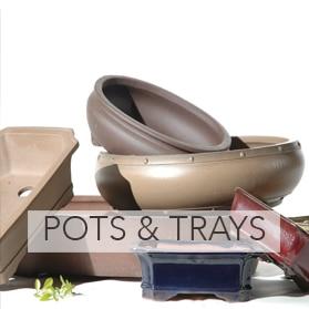 Bonsai pots & trays for sale