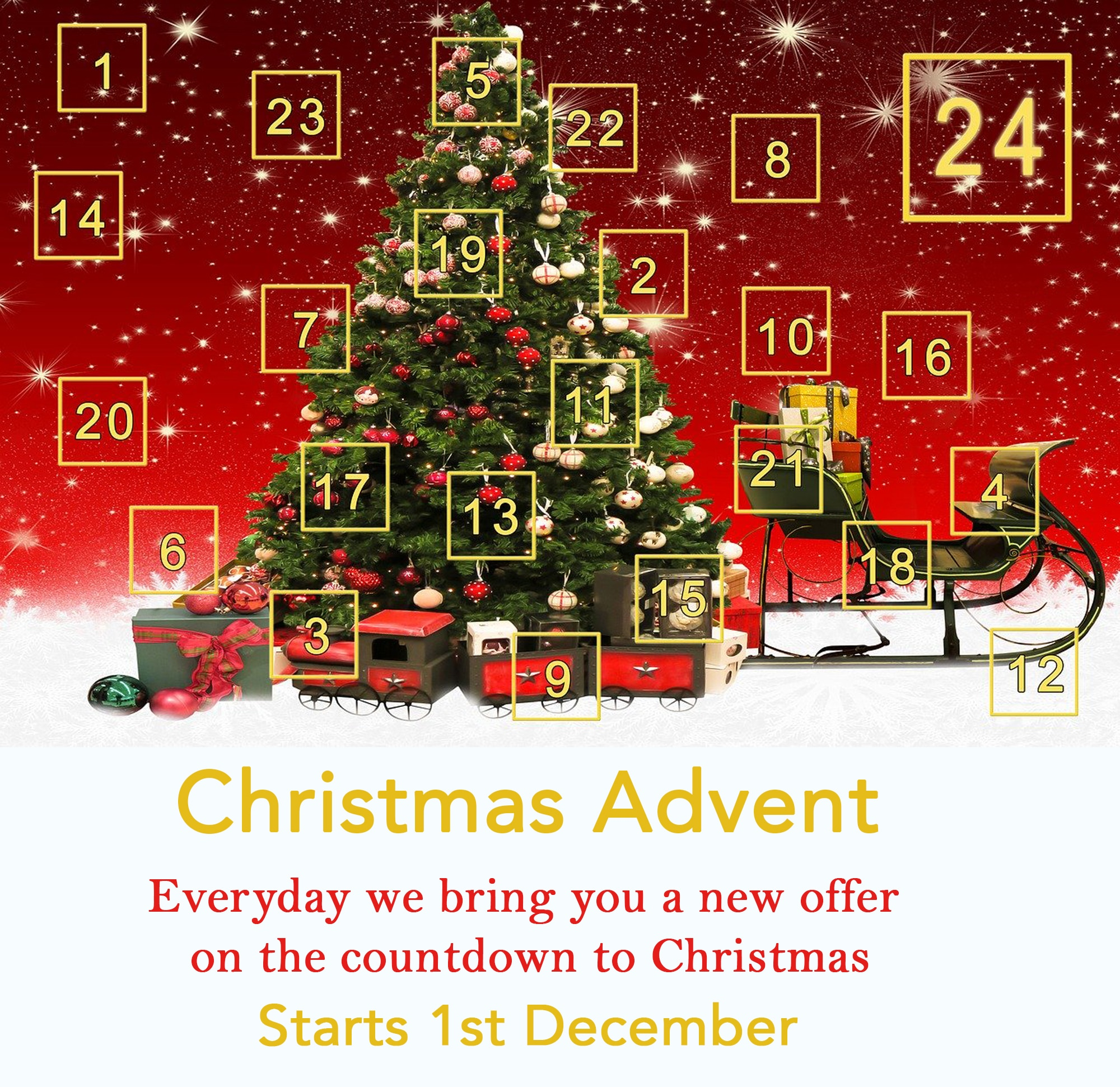 Bonsai Direct Christmas advent Offers coming ...